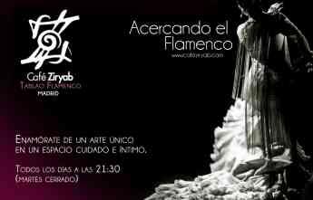 Foto de Acercando el Flamenco