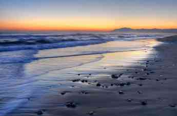 Bamboo Property Group muestra playas paradisíacas de Marbella