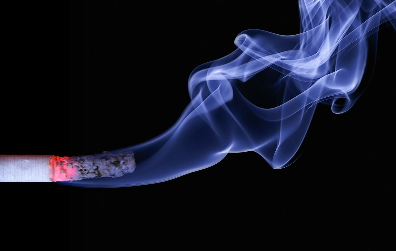 Foto de Tabaco - Fertilidad