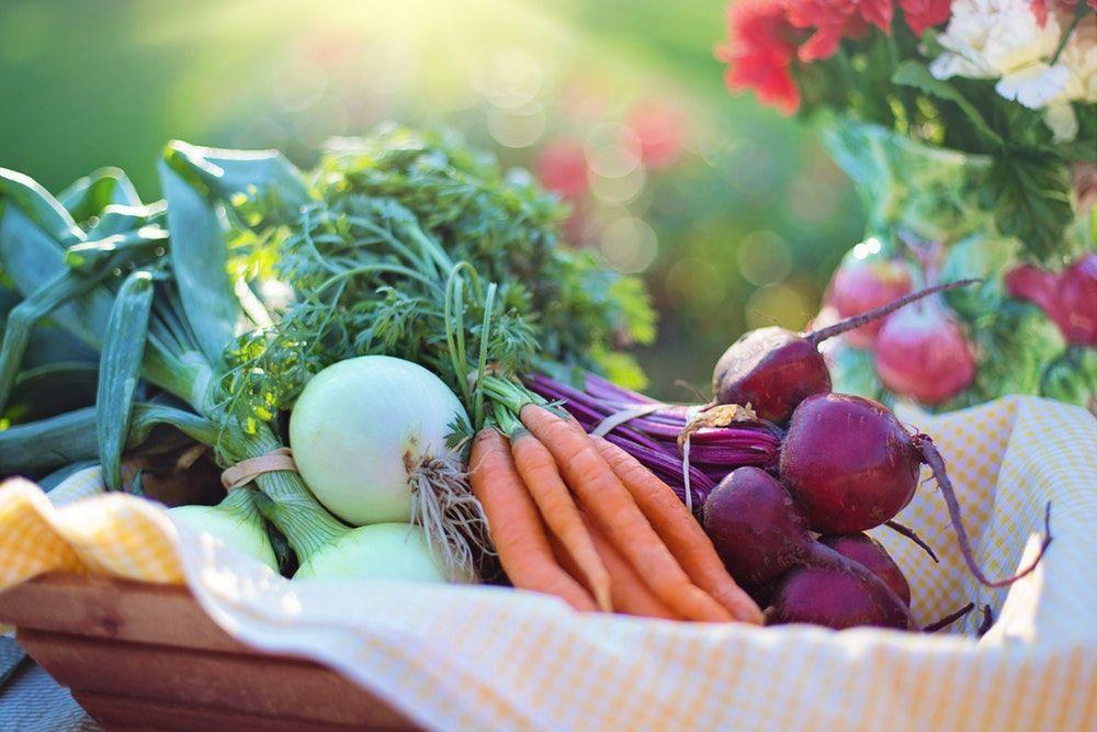 Foto de La dieta mediterránea y los buenos hábitos sitúan a