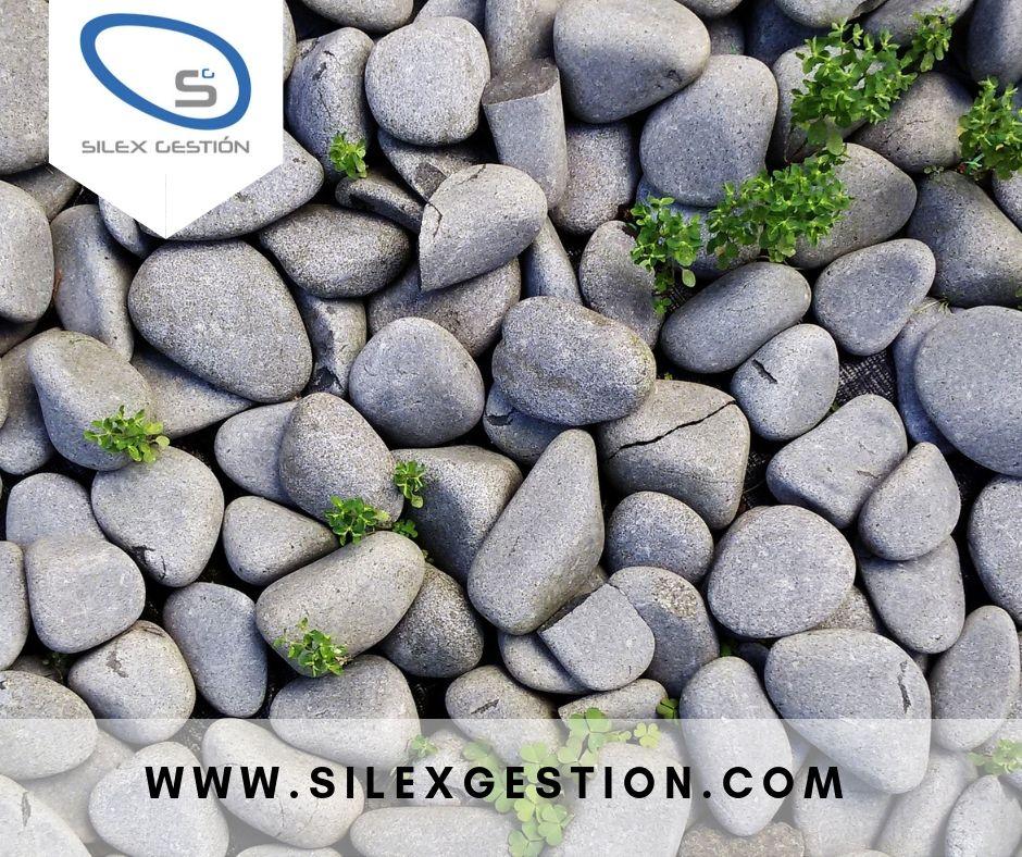 Silex Gestion