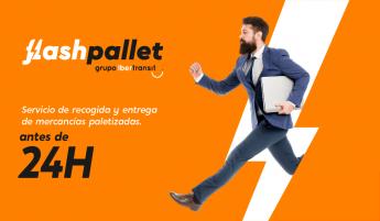 Nace Flash Pallet, la primera empresa especializada en el envío
