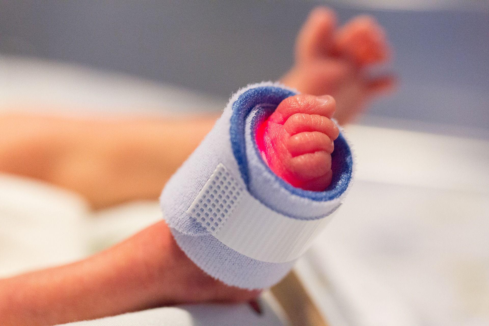 Foto de La reproducción asistida pasará de ser parte del problema