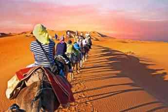 Family Morocco Tour