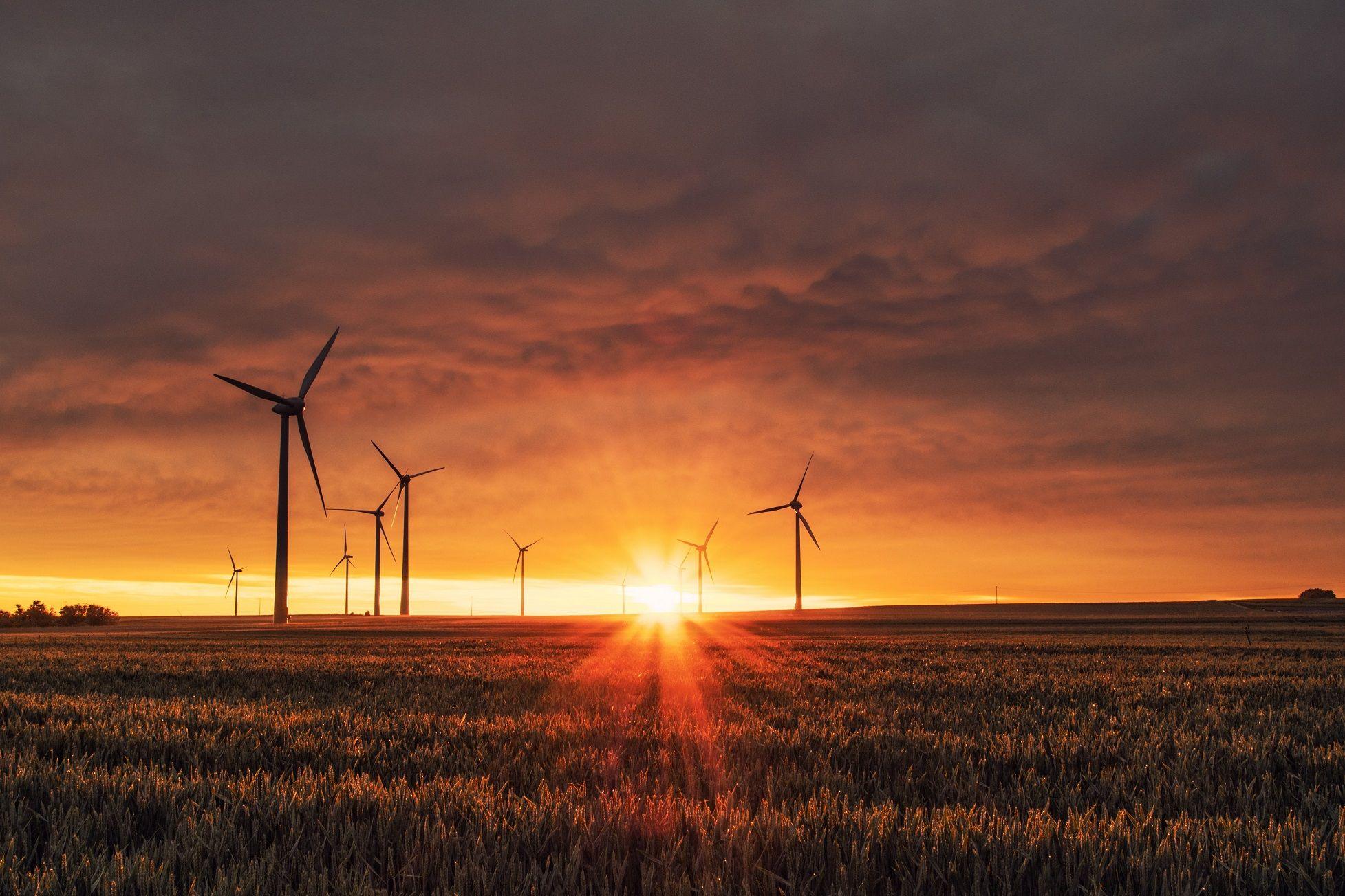 Foto de Atos compensa el 100% de sus emisiones de carbono a través