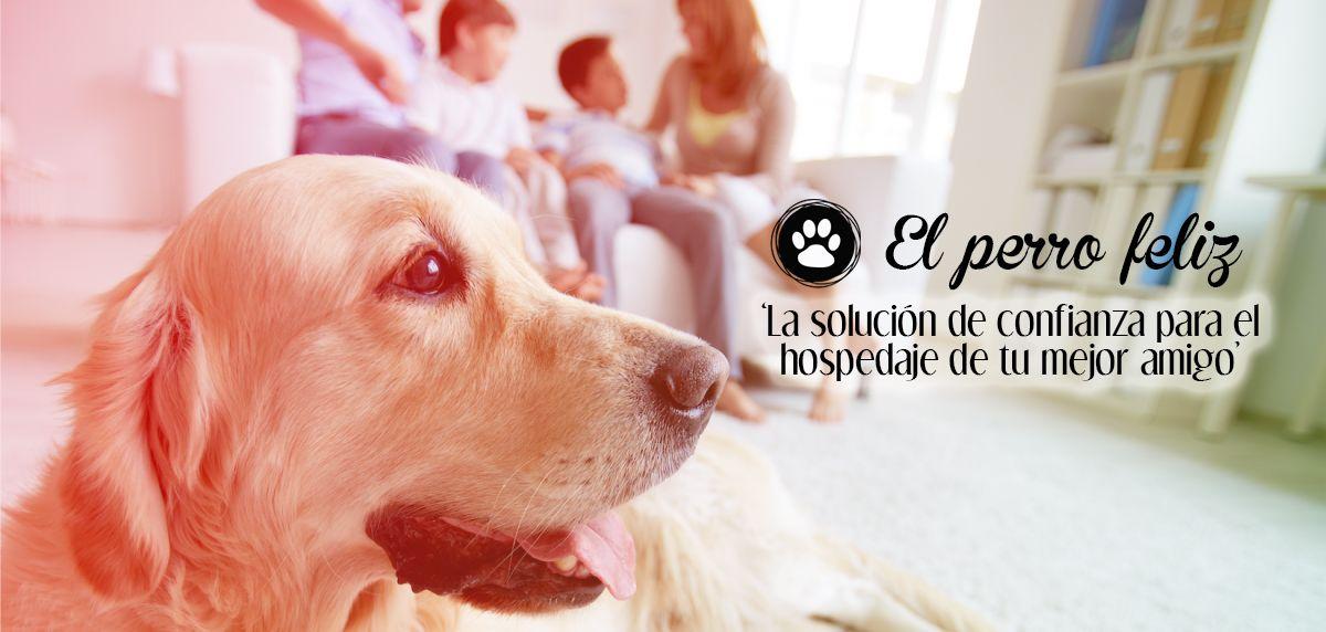 Foto de Franquicia El Perro Feliz