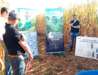 Jornada demostrativa del de uso productos Symborg en maíz realizada en Francia