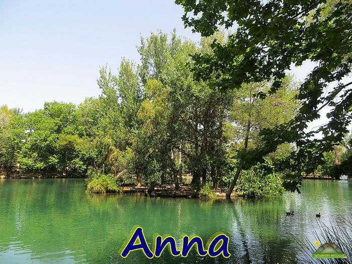 Fotografia LA ALBUFERA DE ANNA