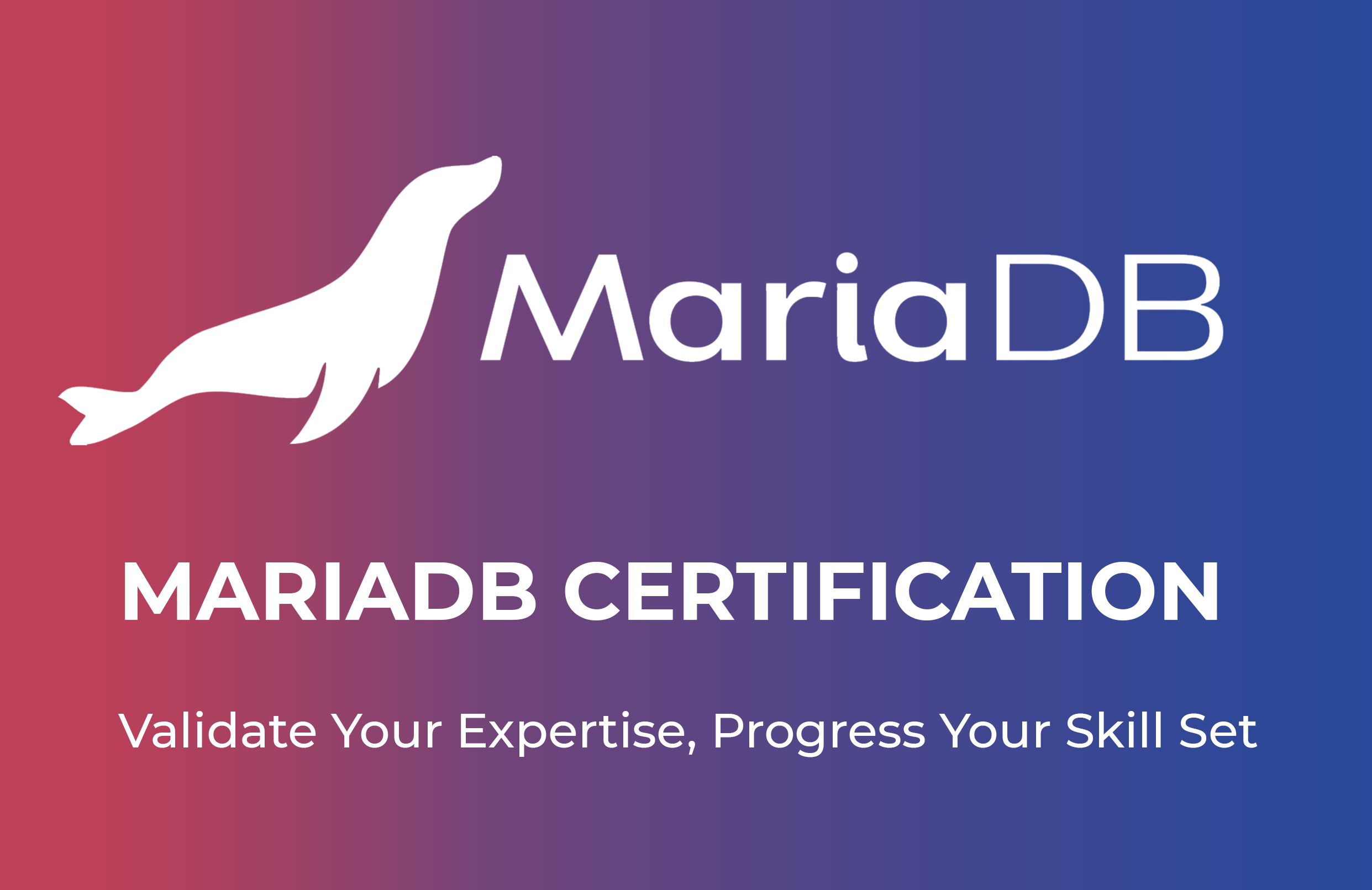 Foto de MariaDB Certification