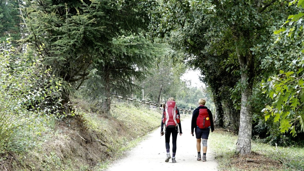 Fotografia Beneficios terapéuticos del Camino de Santiago