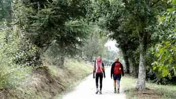 Noticias Ocio | Beneficios terapéuticos del Camino de Santiago
