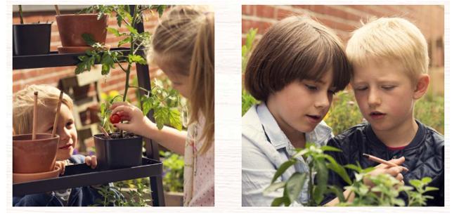 Sprout propone un regalo eco friendly para sorprender a los profesores en fin de curso