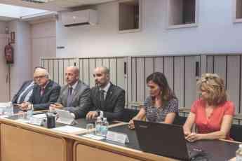 Foto de Constitución y fundación de la llamada Unión Profesional