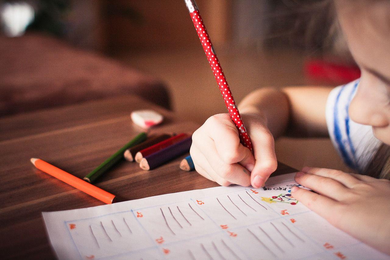 Foto de El director del Instituto Montessori Canela explica las