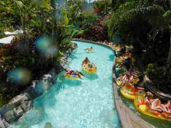 Foto de La Compañía Loro Parque presenta el reconocimiento de Siam
