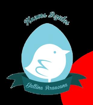 Gallina Araucana explica las características de estas gallinas