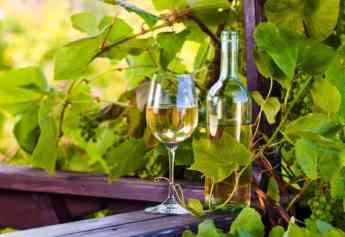Propiedades y mitos del vino blanco by Delivinos