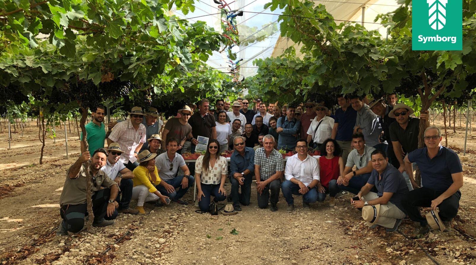 Foto de Gira Técnica con productores internacionales de Uva de Mesa