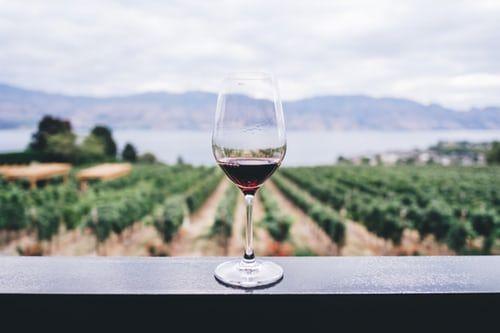 Delivinos Urban Gourmet descubre las claves para entender el vino