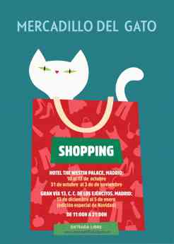 Noticias Madrid | Mercadillo del gato