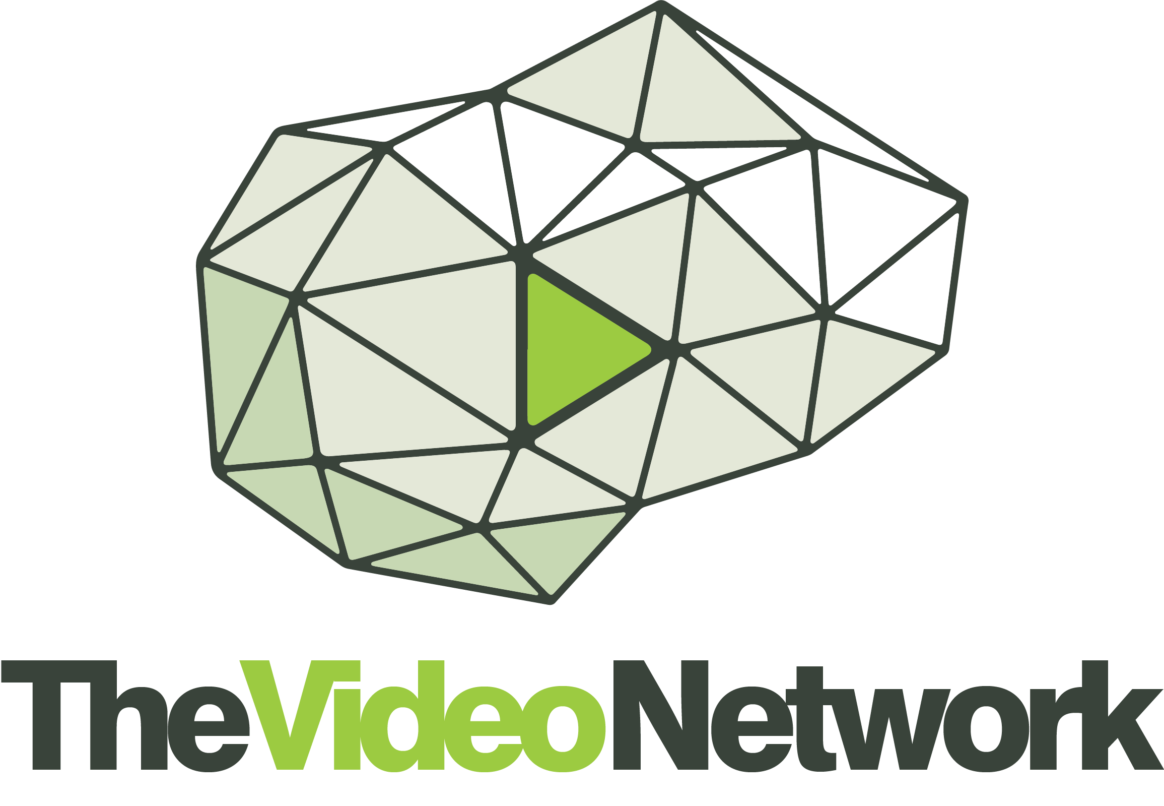 The Video Network