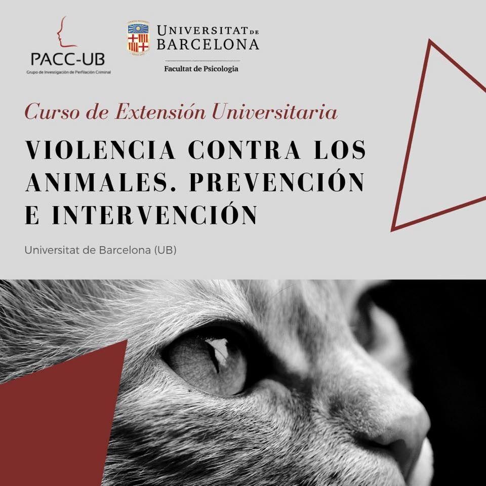 La UB pionera al organizar el I Curso universitario sobre violencia hacia los animales