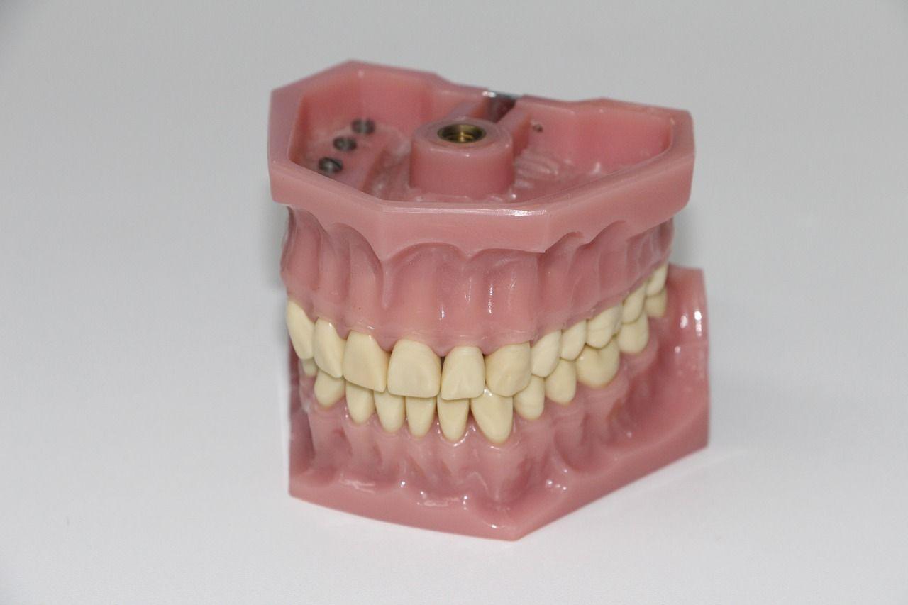 Foto de master en cerámica dental
