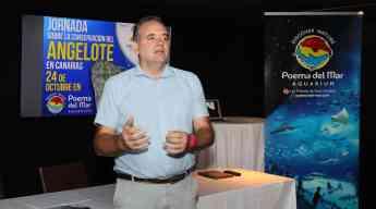 El acuario Poema del Mar acoge una jornada sobre la  conservación del angelote en Canarias
