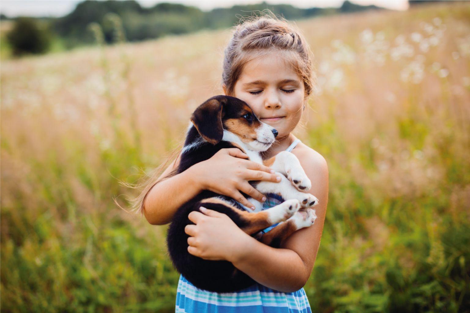 Foto de Adopción de mascotas
