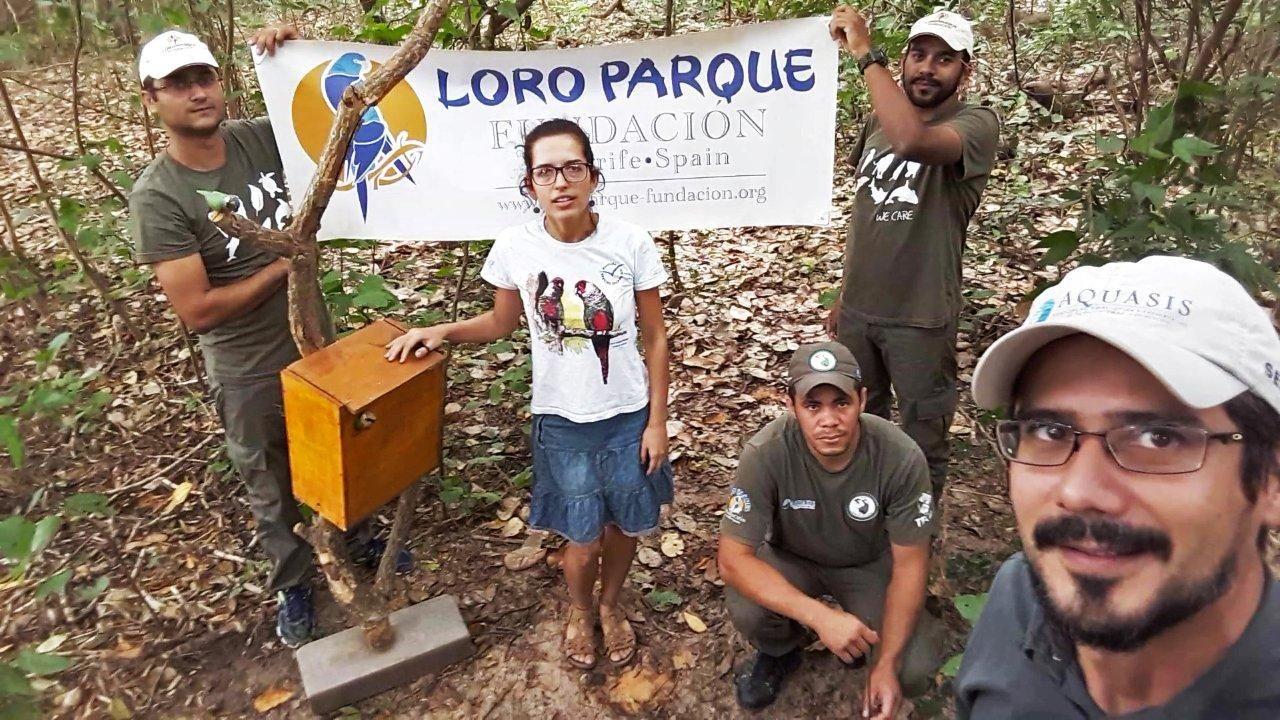 Loro Parque Fundación