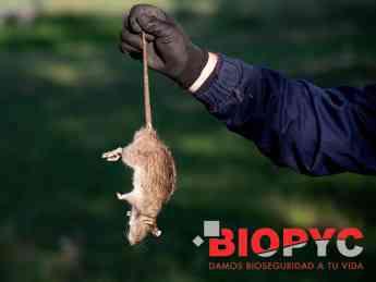 Biopyc