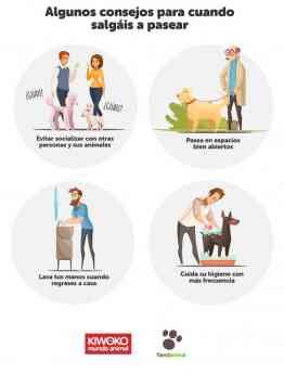 Recomendación paseo con mascotas - COVID 19