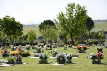 Noticias Madrid | Parque Cementerio de La Paz