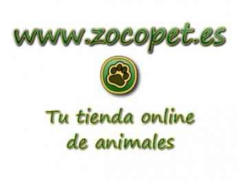 ZOCOPET - TIENDA DE ACCESORIOS PARA MASCOTAS