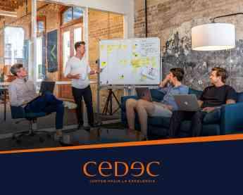 CEDEC, consultoría de organización estratégica de empresas