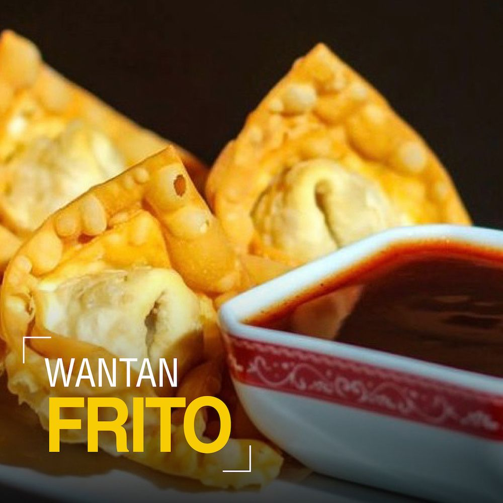 Fotografia Wantan Frito