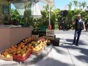 Foto de Loro-Parque-dona-frutas-de-sus-fincas-ecológicas