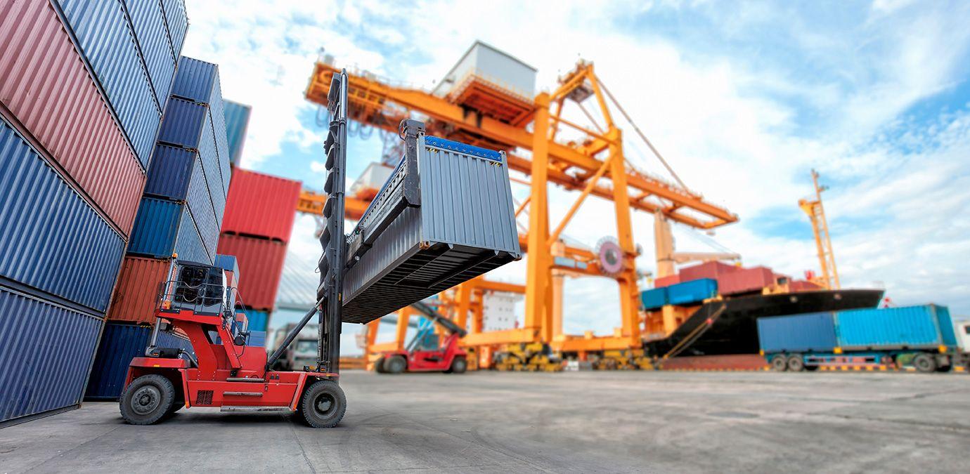 Foto de El programa de verificación para exportar productos a
