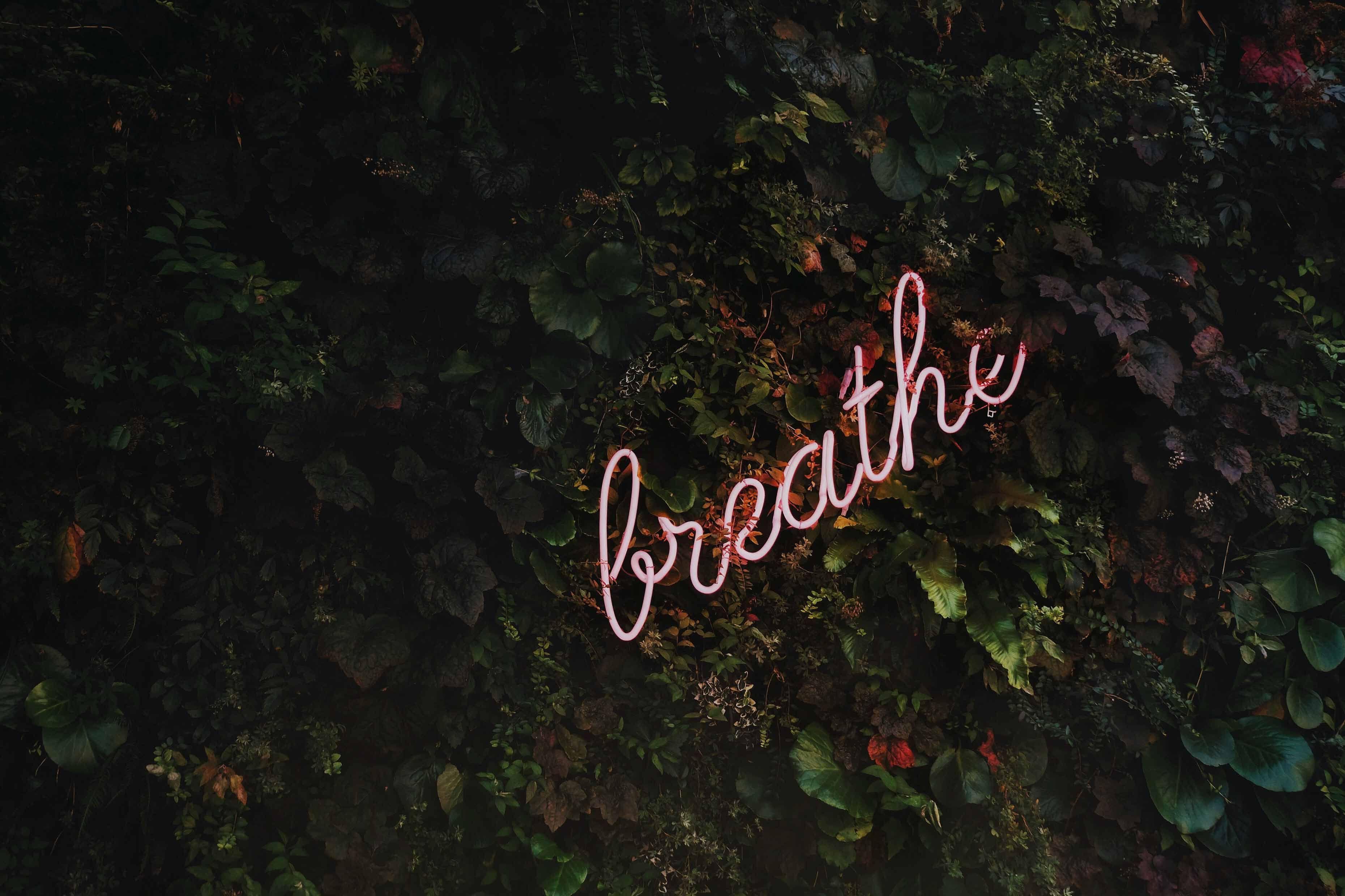 Foto de Breathe
