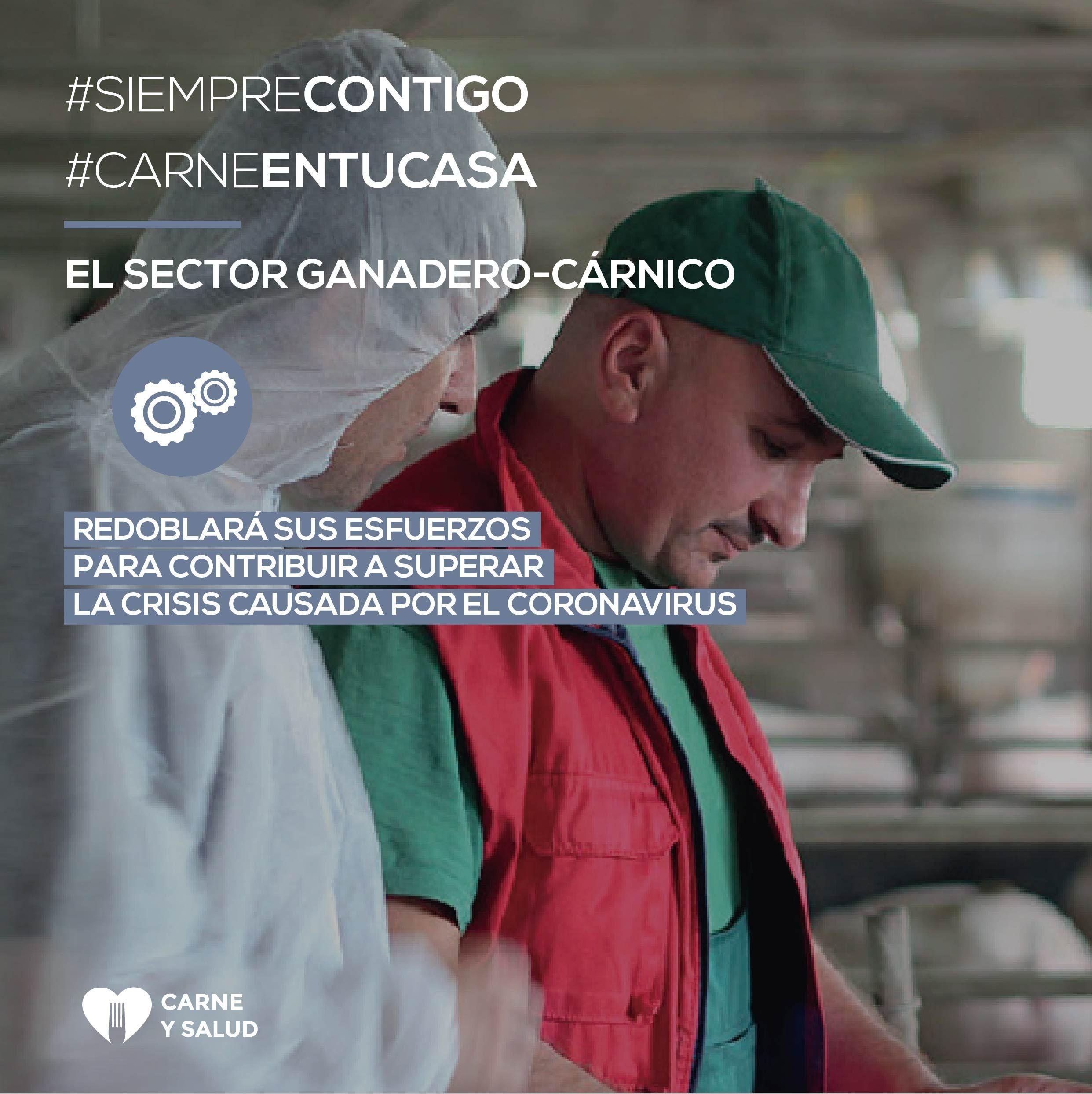 Foto de El sector ganadero-cárnico