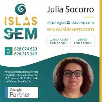 SEO y Posicionamiento Web & Islas SEM