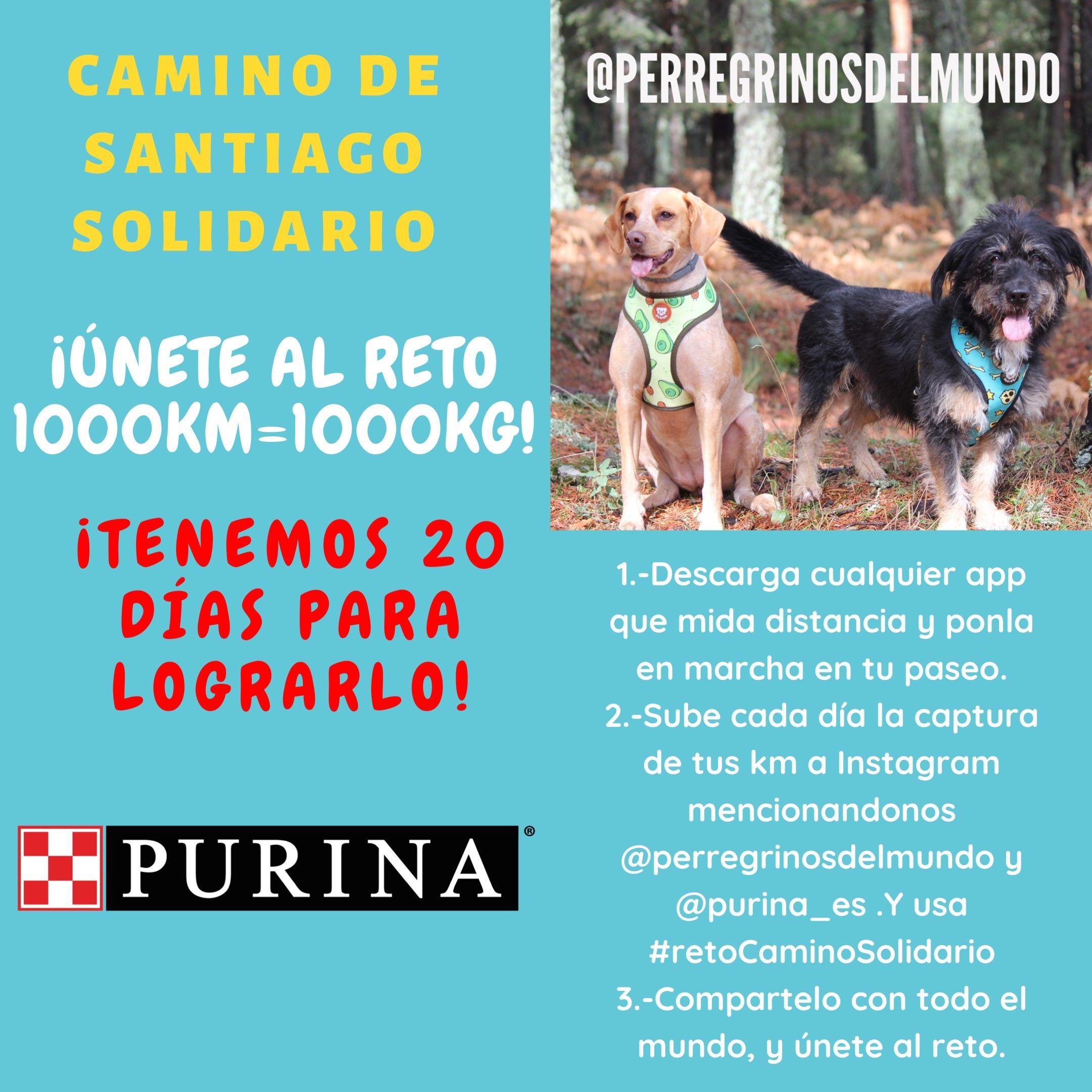 Foto de Purina y PeRRegrinos del Mundo, #retoCaminoSolidario