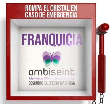 Ambiseint establece un plan de acceso para nuevos franquiciados