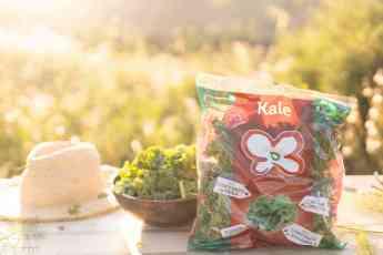Kale Primaflor