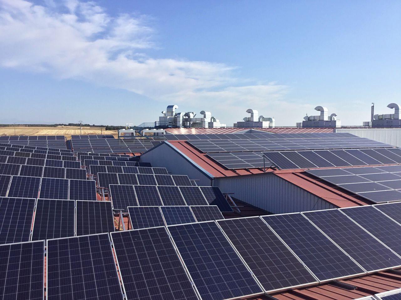 Foto de Paneles solares en las instalaciones de Embutidos España