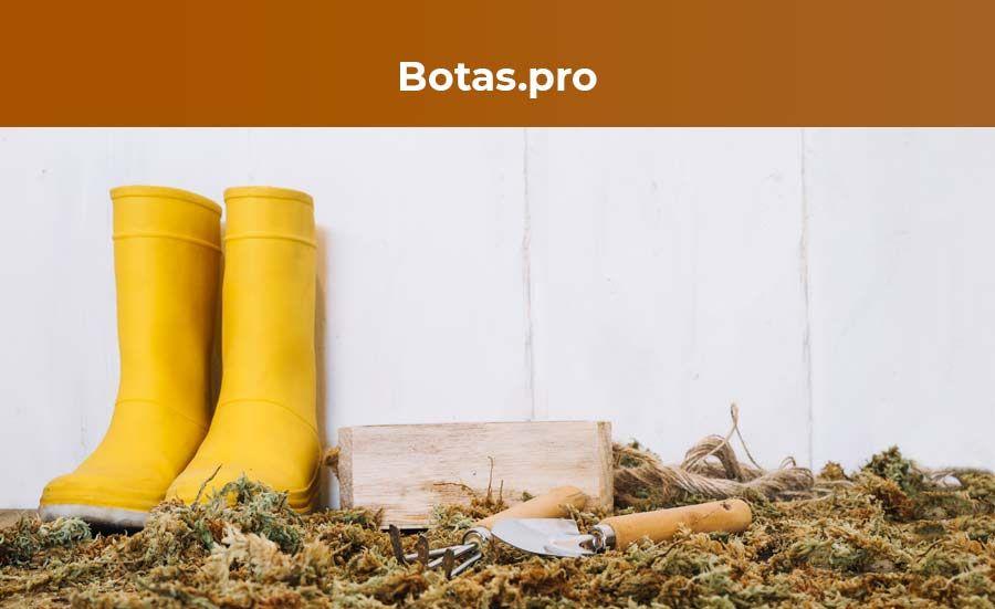 Fotografia Botas.pro
