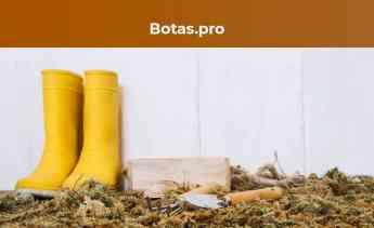 Noticias Gran consumo y distribución | Botas.pro