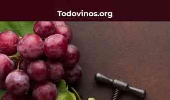 Noticias Nacional | Todovinos.org