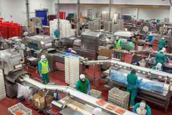 Foto de fábrica Emcesa