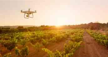 Atos lleva la IA mediante imágenes de drones y satélites a bodegas de Ribera del Duero para mejorar la producción y calidad de l